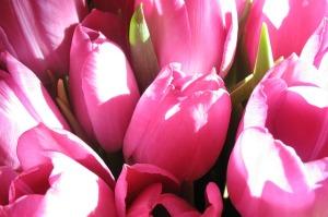bouquet-15308_640